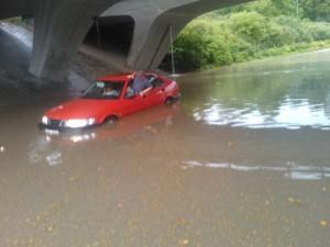 Aquatic Saab